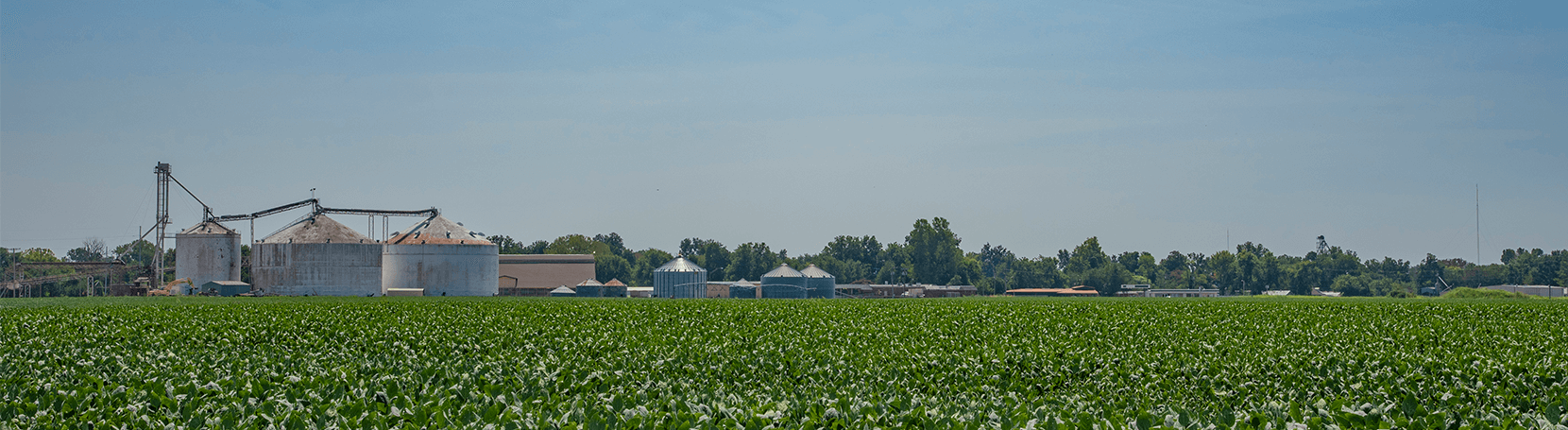 Agriculture field with silos.